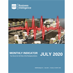 July 2020 Monthly Indicator